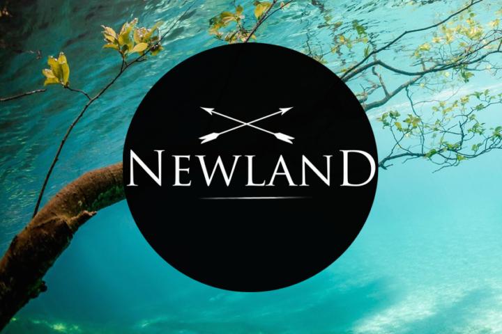 logo_newland_ohne_beschriftung_-_kopie.png